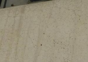 Crazing in concrete