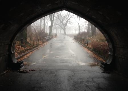 12 Central Park